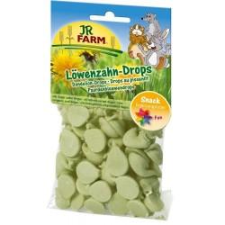 JR FARM Dropsy mniszek 75 g