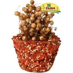 JR FARM Miseczka naturalnych przysmaków-marchew