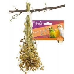 JR Birds Len 30 g