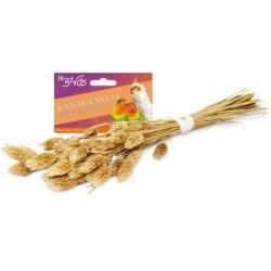 JR Birds Nasiona mozgi kanaryjskiej 20 g