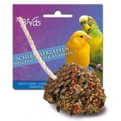 JR Birds Smaczna Szyszka dla Papużki Falistej i Kanarka 2 sztuki / 120 g