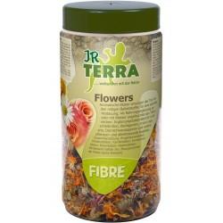 JR Terra błonnik roślinny 50 g