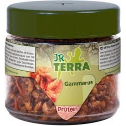 JR Terra Proteiny Gammarus 20 g