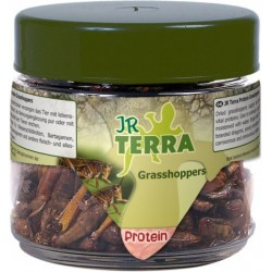 JR Terra Proteiny - konik polny 15 g