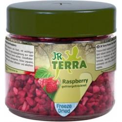 JR Terra liofilizowane maliny 15 g